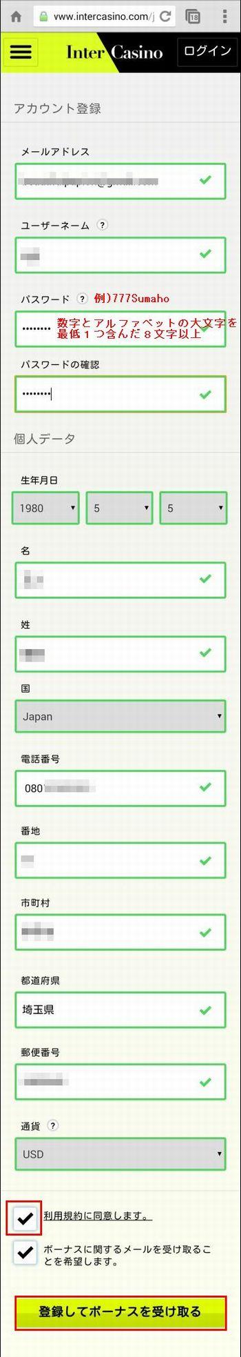 インターカジノ_登録_入力フィールド